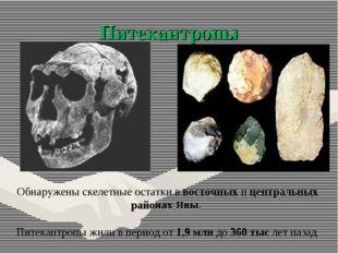 Питекантропы Обнаружены скелетные остатки в восточных и центральных районах Я