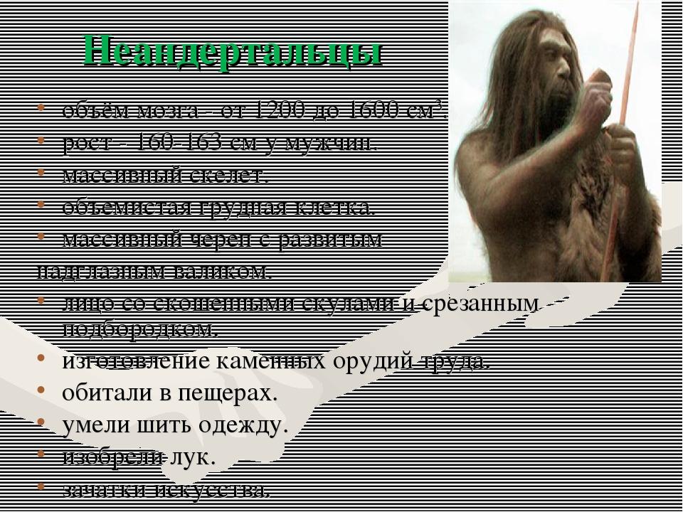 объём мозга - от 1200 до 1600 см3. рост - 160-163 см у мужчин. массивный скел...