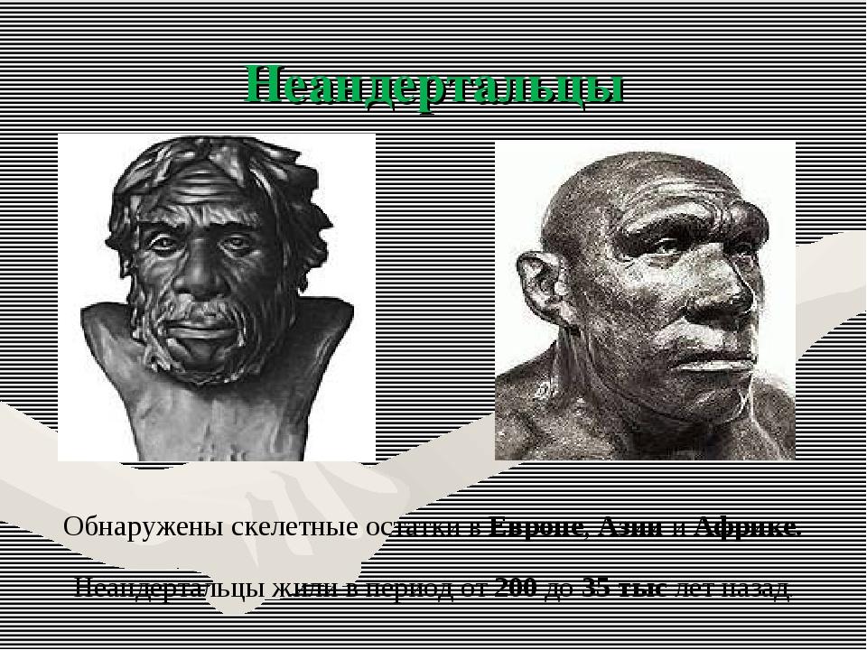 Неандертальцы Обнаружены скелетные остатки в Европе, Азии и Африке. Неандерта...