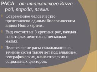 РАСА - от итальянского Razza - род, порода, племя. Современное человечество п