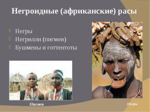 Негроидные (африканские) расы Негры Негрилли (пигмеи) Бушмены и готтентоты Не