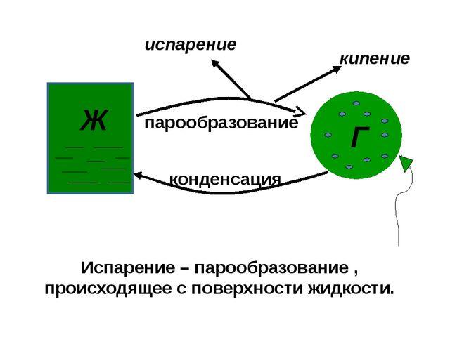 Ж Г парообразование конденсация кипение испарение Испарение – парообразовани...