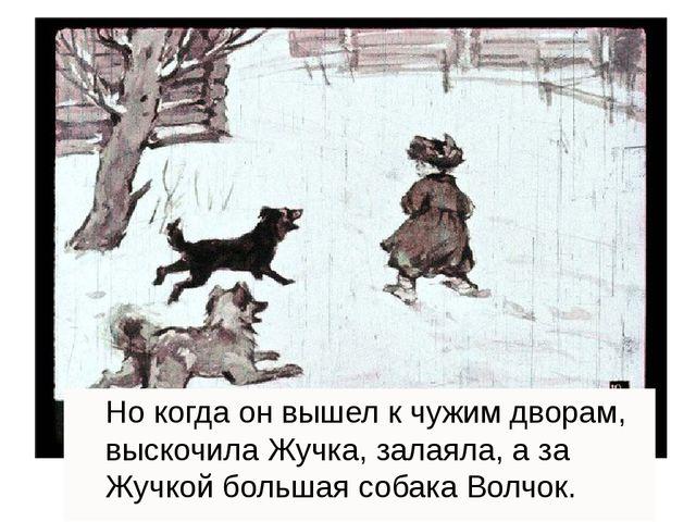 Но когда он вышел к чужим дворам, выскочила Жучка, залаяла, а за Жучкой боль...