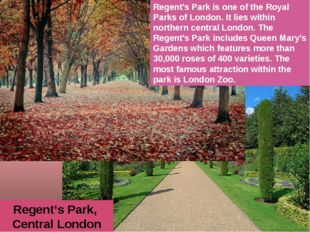 Regent's Park, Central London Regent's Park is one of the Royal Parks of Lond
