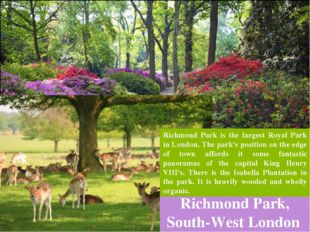 Richmond Park, South-West London Richmond Park is the largest Royal Park in L