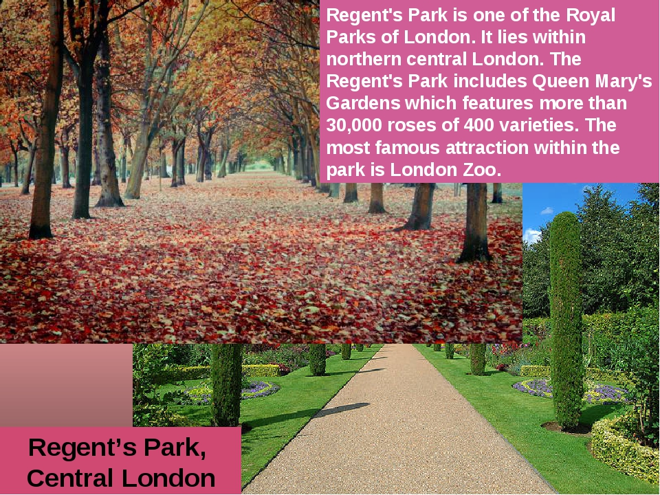 Regent's Park, Central London Regent's Park is one of the Royal Parks of Lond...