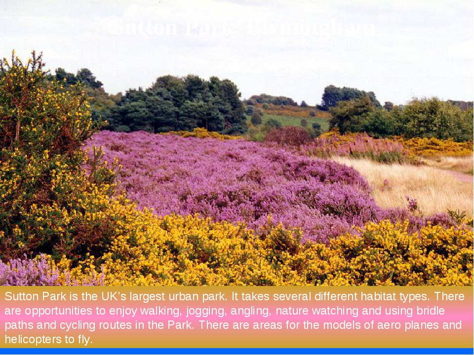 Sutton Park is the UK's largest urban park. It takes several different habita...