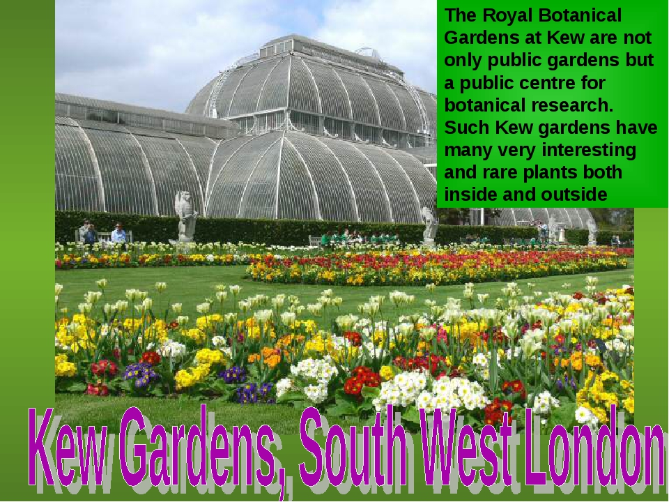 The Royal Botanical Gardens at Kew are not only public gardens but a public c...