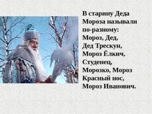 В старину Деда Мороза называли по-разному: Мороз, Дед, Дед Трескун, Мороз Ёлк