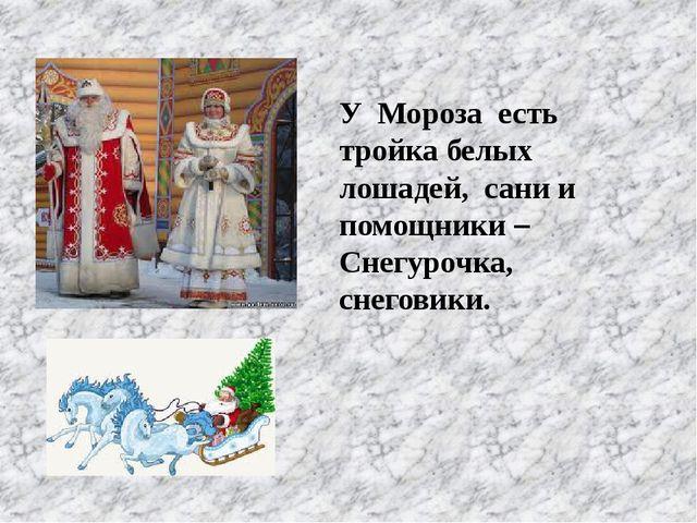У Мороза есть тройка белых лошадей, сани и помощники – Снегурочка, снеговики.