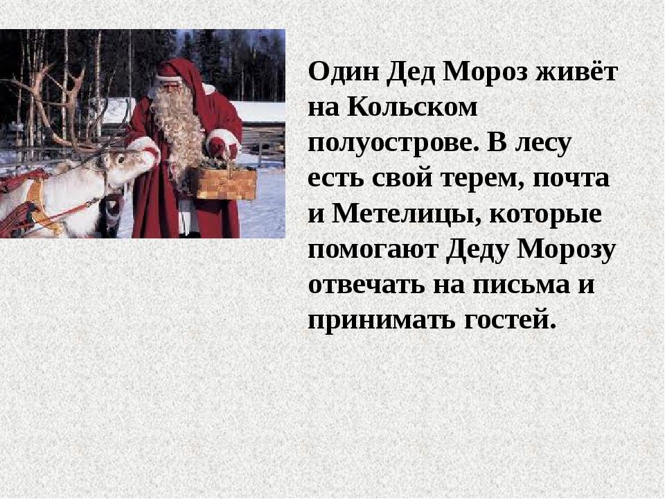 Один Дед Мороз живёт на Кольском полуострове. В лесу есть свой терем, почта и...
