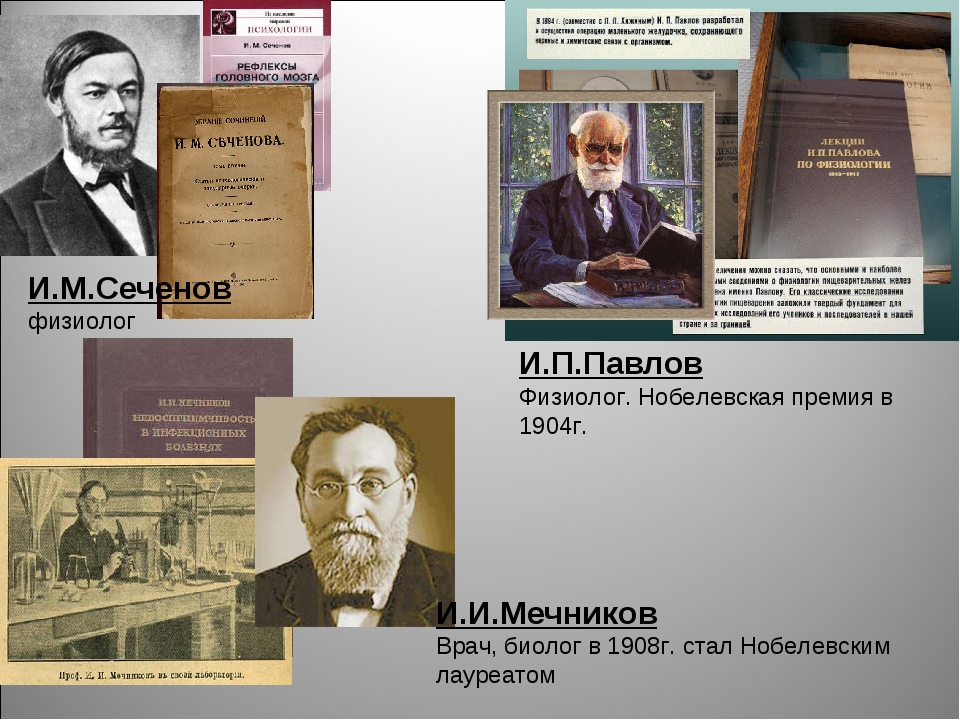 И.М.Сеченов физиолог И.П.Павлов Физиолог. Нобелевская премия в 1904г. И.И.Меч...