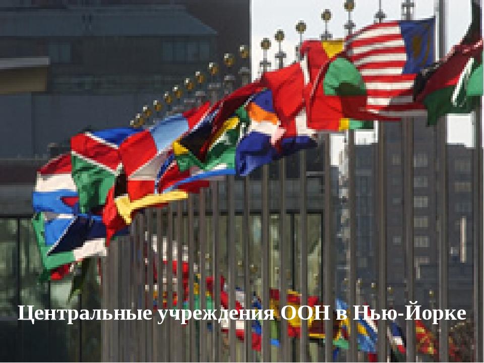 Центральные учреждения ООН в Нью-Йорке