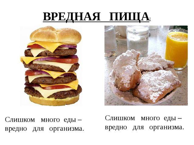 Слишком много еды – вредно для организма. Слишком много еды – вредно для орга...