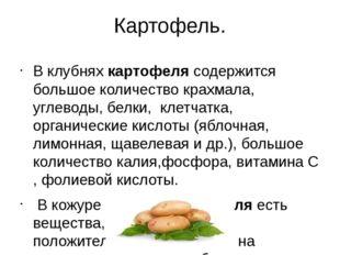 Картофель. В клубняхкартофелясодержится большое количество крахмала, углево