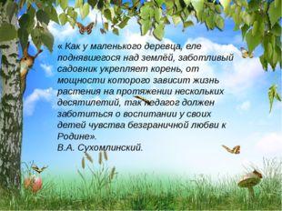 « Как у маленького деревца, еле поднявшегося над землёй, заботливый садовник
