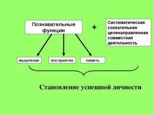 Познавательные функции мышление восприятие память + Систематическая сознатель