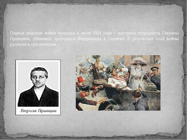 Первая мировая война началась в июле 1914 года с выстрела террориста Гаврилы...