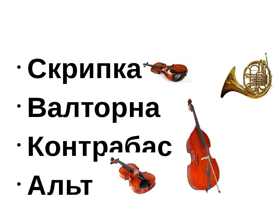 Скрипка Валторна Контрабас Альт