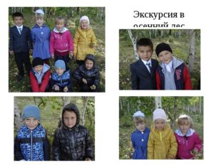 Экскурсия в осенний лес.