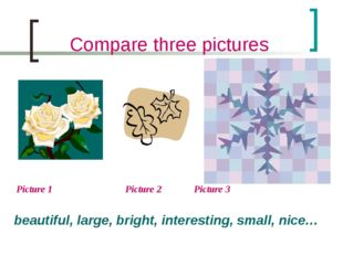 Compare three pictures Picture 1 		 Picture 2 	 Picture 3 beautiful, large, b
