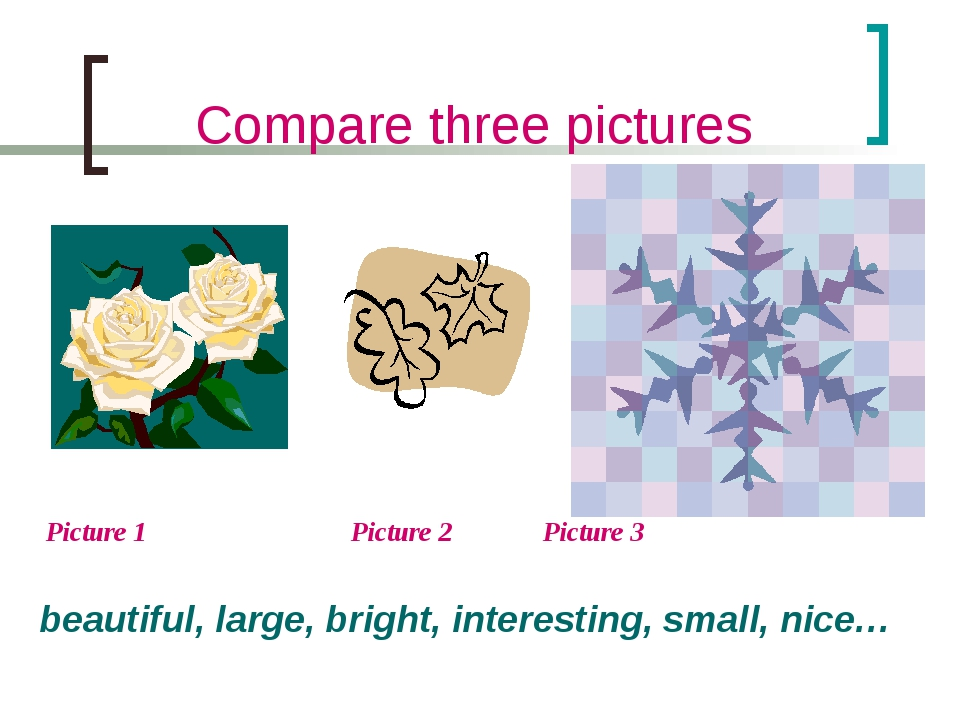 Compare three pictures Picture 1 		 Picture 2 	 Picture 3 beautiful, large, b...