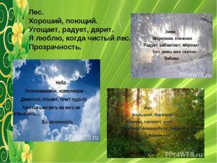 Лес. Хороший, поющий. Угощает, радует, дарит. Я люблю, когда чистый лес. Проз
