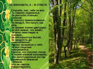 НЕ ВИНОВАТА, А – В ОТВЕТЕ Спасибо, лес, тебе за всё: За тишину уединенья, За
