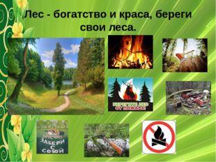 Лес - богатство и краса, береги свои леса.