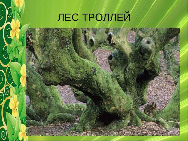 ЛЕС ТРОЛЛЕЙ