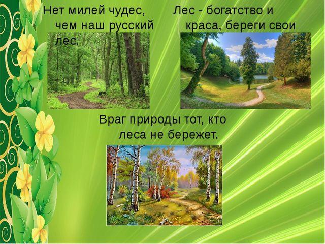 Лес - богатство и краса, береги свои леса. Враг природы тот, кто леса не бере...