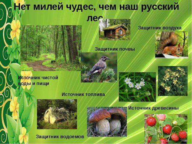 Нет милей чудес, чем наш русский лес. Защитник воздуха Защитник водоемов Защи...