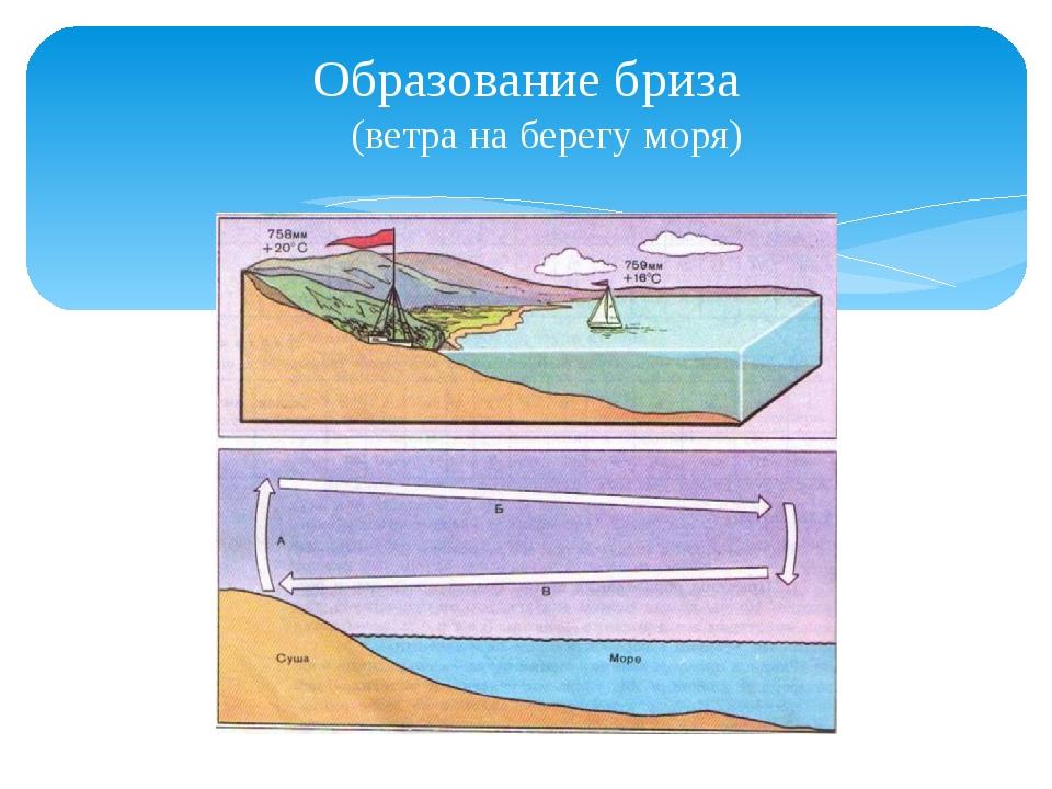 Образование бриза (ветра на берегу моря)