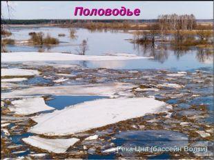 Половодье Река Цна (бассейн Волги)