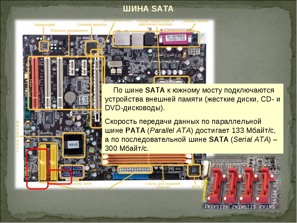 ШИНА SATA По шине SАТА к южному мосту подключаются устройства внешней памяти...