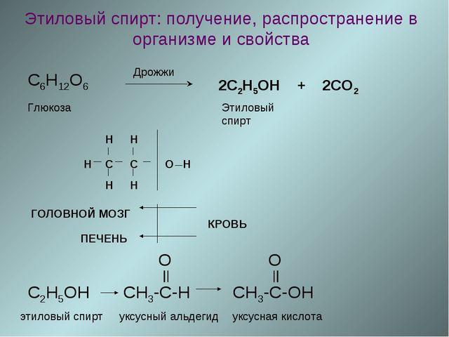 Этиловый спирт: получение, распространение в организме и свойства C6H12O6 Дро...