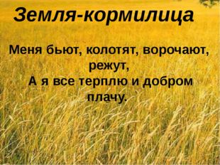 Земля-кормилица Меня бьют, колотят, ворочают, режут, А я все терплю и добром