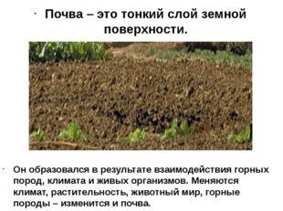 Почва – это тонкий слой земной поверхности. Он образовался в результате взаим