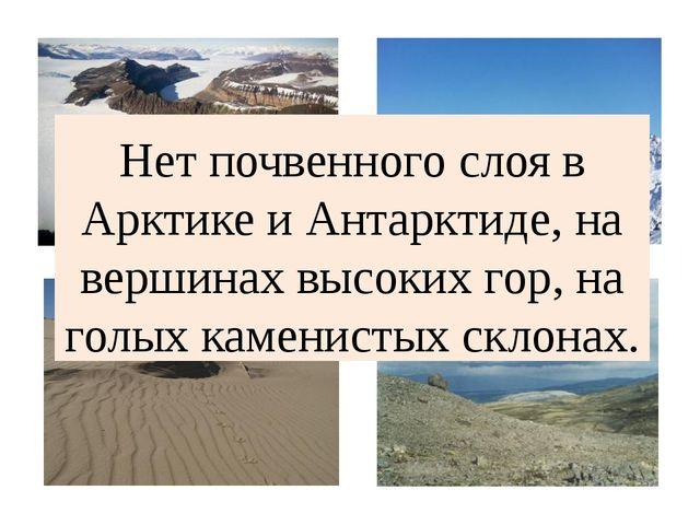 Нет почвенного слоя в Арктике и Антарктиде, на вершинах высоких гор, на голых...