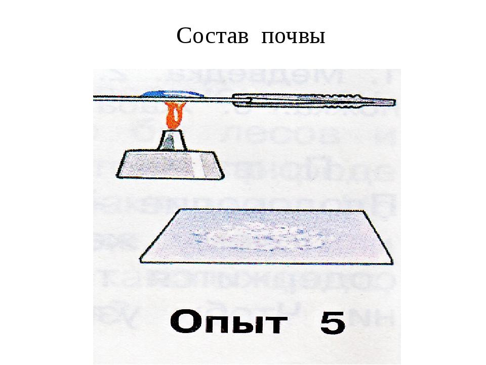 Состав почвы