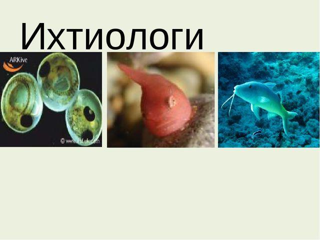 Ихтиологи