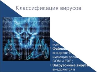 Классификация вирусов В зависимости от среды обитания вирусы можно разделить