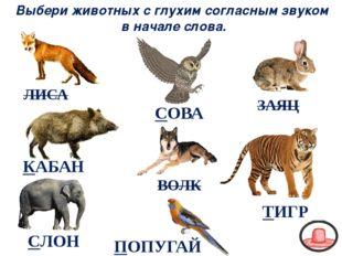 ВОЛК ЗАЯЦ КАБАН ЛИСА Выбери животных с глухим согласным звуком в начале слова