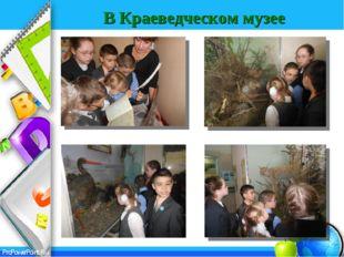 В Краеведческом музее ProPowerPoint.Ru