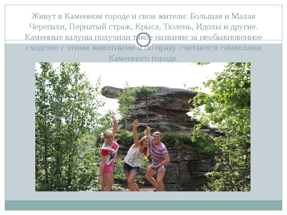 Живут в Каменном городе и свои жители: Большая и Малая Черепахи, Пернатый стр...