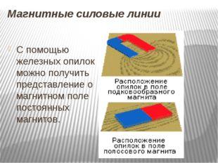 Магнитные силовые линии С помощью железных опилок можно получить представлени