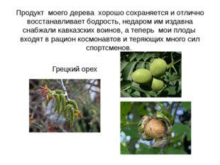 Продукт моего дерева хорошо сохраняется и отлично восстанавливает бодрость, н