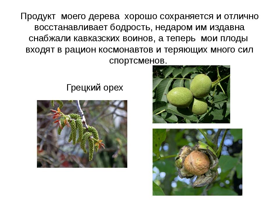 Продукт моего дерева хорошо сохраняется и отлично восстанавливает бодрость, н...