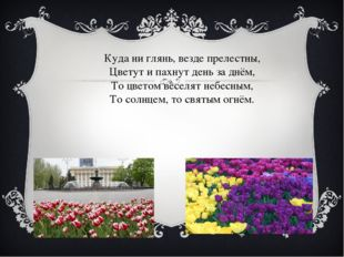 Куда ни глянь, везде прелестны, Цветут и пахнут день за днём, То цветом весел
