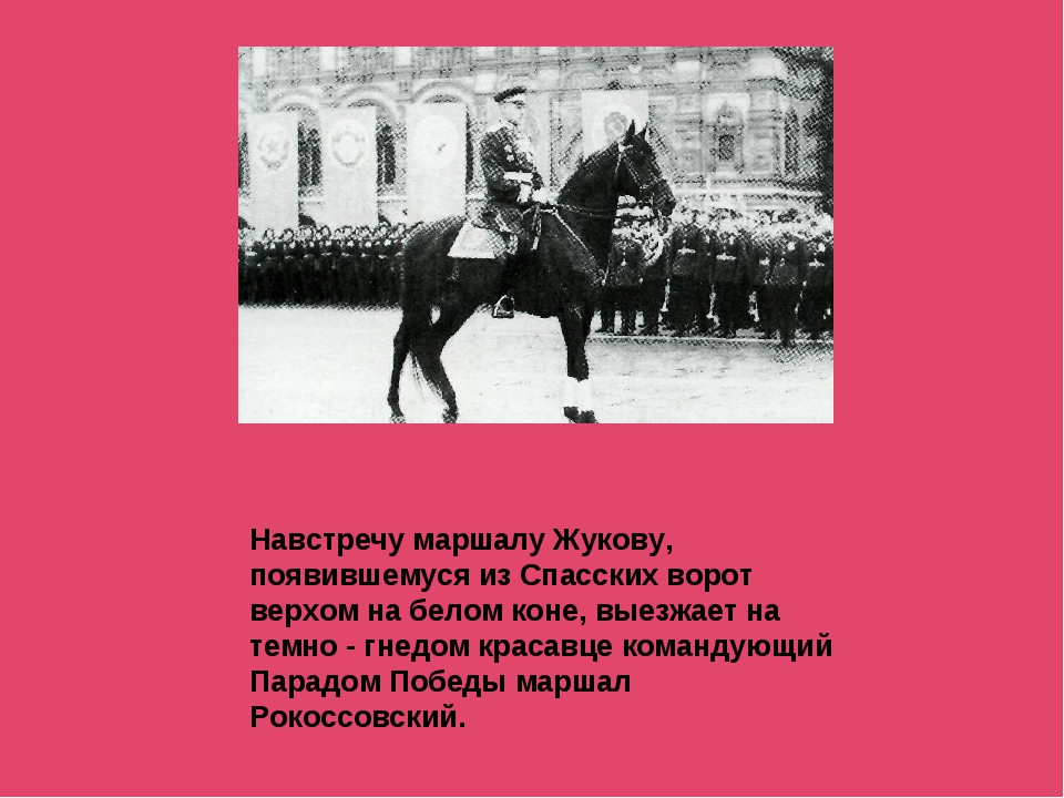 Навстречу маршалу Жукову, появившемуся из Спасских ворот верхом на белом коне...